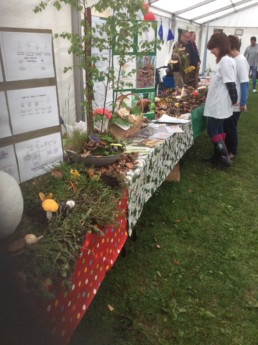 Rickmansworth 2017 display table Margaret and Jane amended by Robin.JPG